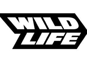 Veja a Wild Life